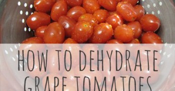 How to Dehydrate Grape Tomatoes