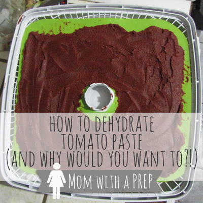 How to Dehydrate Tomato Paste - and why would you even want to ?  |  Mom with a PREP