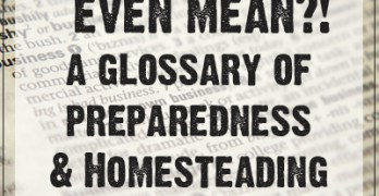 What the Heck does that Even Mean!?  A Glossary of Preparedness & Homesteading Terms