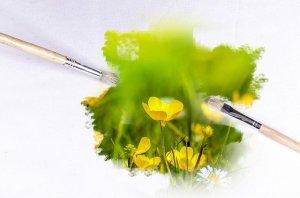 Qu'est-ce que le Greenwashing ? Repeindre en vert pour faire écologique