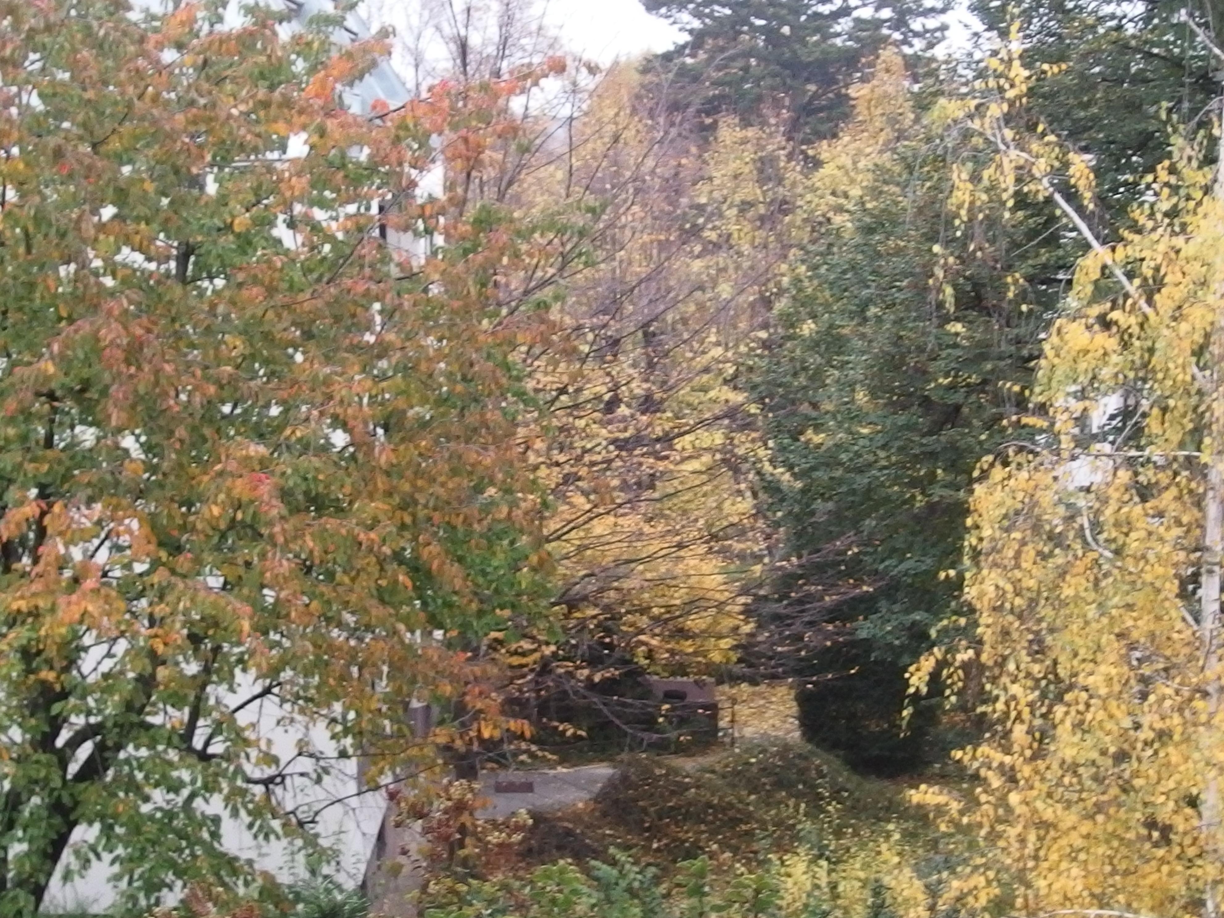 3 astuces pour être plus zen grâce à son balcon-jardin