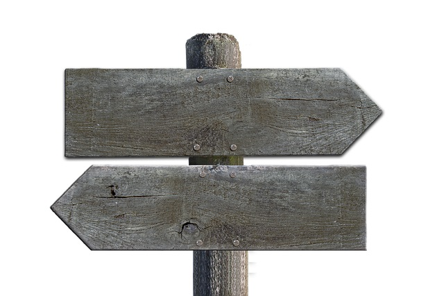 Découvrez comment choisir la bonne direction pour créer sa marque