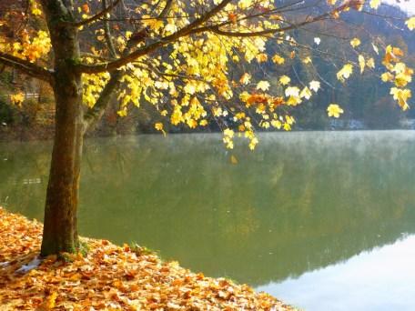 Lac de Lucelle © French Moments