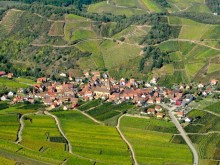 Route des Vins d'Alsace