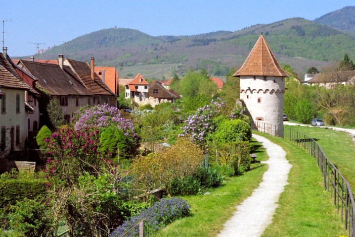 Photos de printemps en Alsace : Bergheim © French Moments
