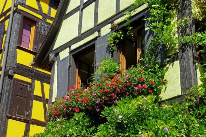 bons plans pour visiter Riquewihr