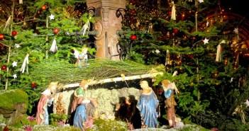 5 idées fausses sur Noël