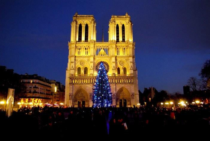 Sapin Notre-Dame de Paris