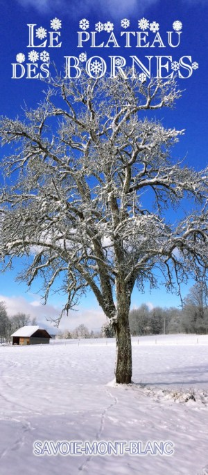 Découvrez le plateau des Bornes en Haute-Savoie © French Moments
