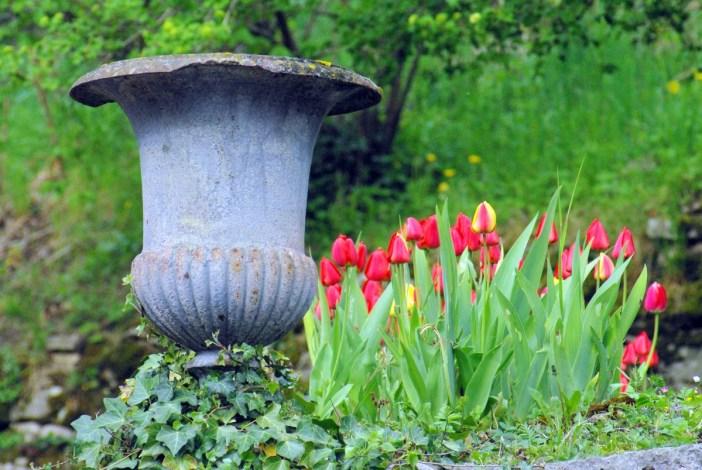 Photo de printemps en Alsace : à Ferrette © French Moments