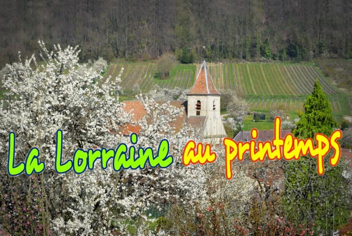 Lorraine au printemps © French Moments