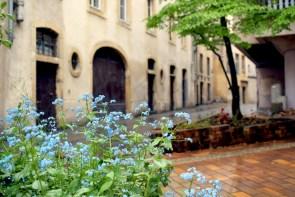 Dans le Vieux-Metz © French Moments