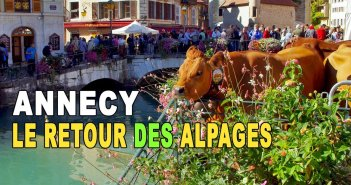 Retour des Alpages à Annecy © French Moments