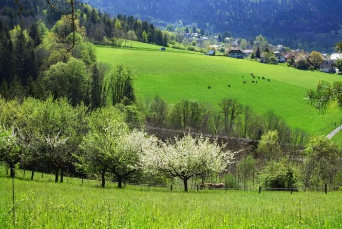 La campagne près du hameau de Ponnay © French Moments