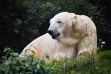 Parc Zoologique et Botanique de Mulhouse © French Moments