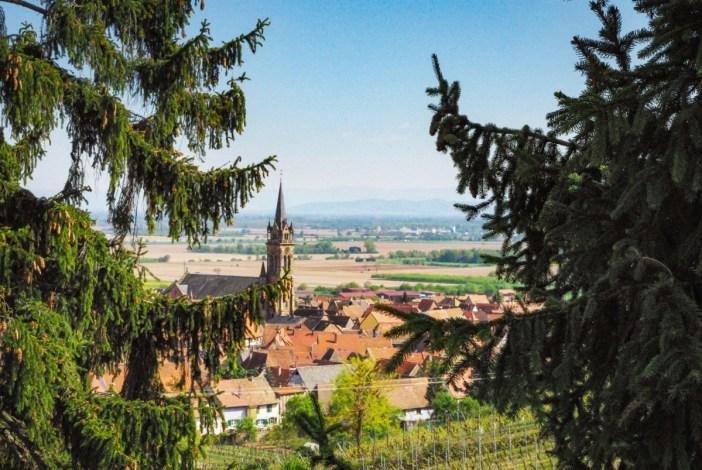 Vue de Dambach-la-Ville depuis le vignoble © French Moments