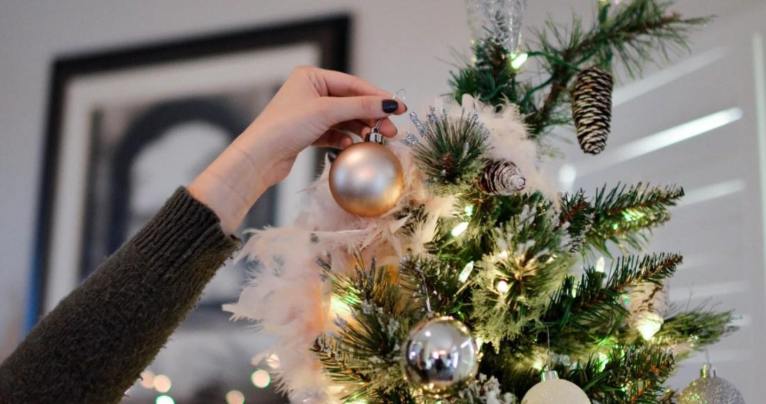 Comment choisirson sapin de Noël