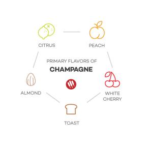 saveurs du champagne
