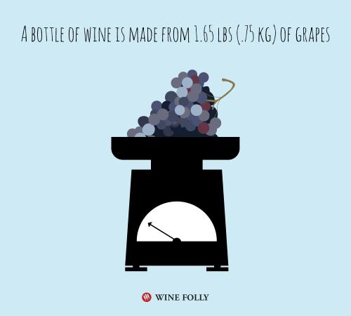 quantité de raisin pour faire une bouteille