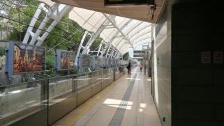 Gare_DISNEY-HK-IMG_20191123_123457