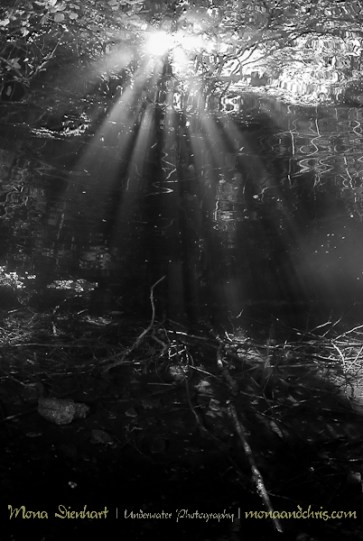 Sun beams In Fernsteinlake