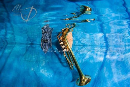trompette-4