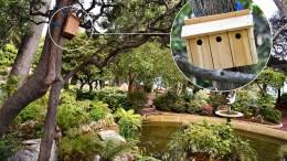 Nei Giardini di Monaco Installate le Cassette Nido per gli Uccelli