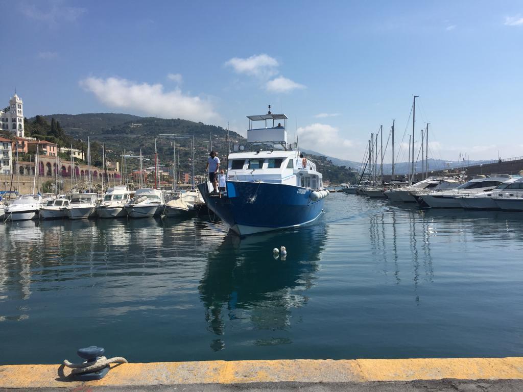 Scuola Biancheri di Ventimiglia: Alla scoperta dei Cetacei nel Santuario Internazionale Pelagos