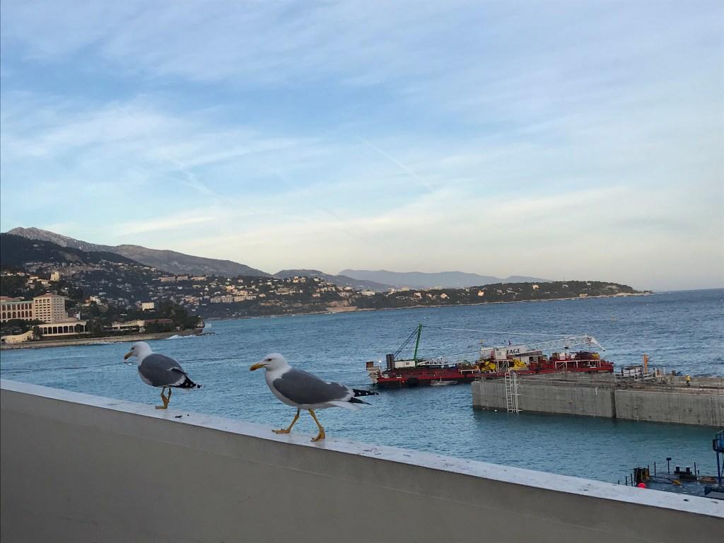Revoca del Divieto di Balneazione a Monte Carlo da Domani, Mercoledì 3 Luglio