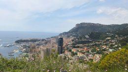 5 Nuovi Casi Positivi al Covid-19 nel Principato di Monaco