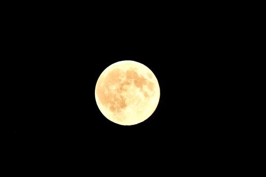 Full Moon over Stadium Louis II @CelinaLafuenteDeLavothaJPG
