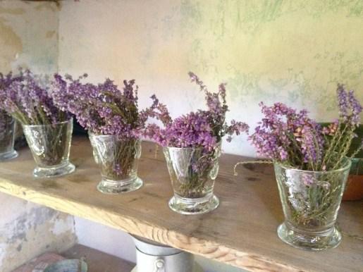 Lavender @CelinaLafuenteDeLavotha