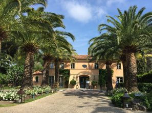 The entrance lined by beautiful and lushy palm trees @CelinaLafuentedeLavotha