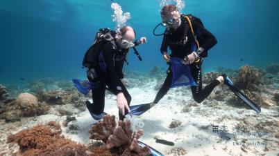 Prince Albert II de Monaco and Robert Calcagno - Philippines 2016 (15) @Copyright Institut océanographique