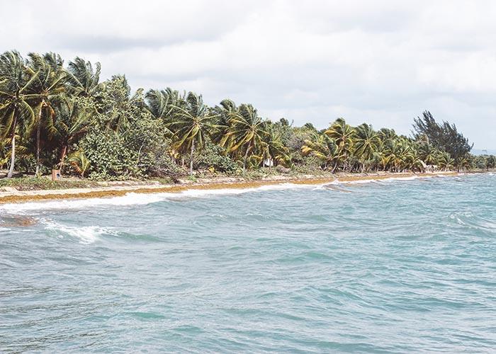 Best belize dive resort