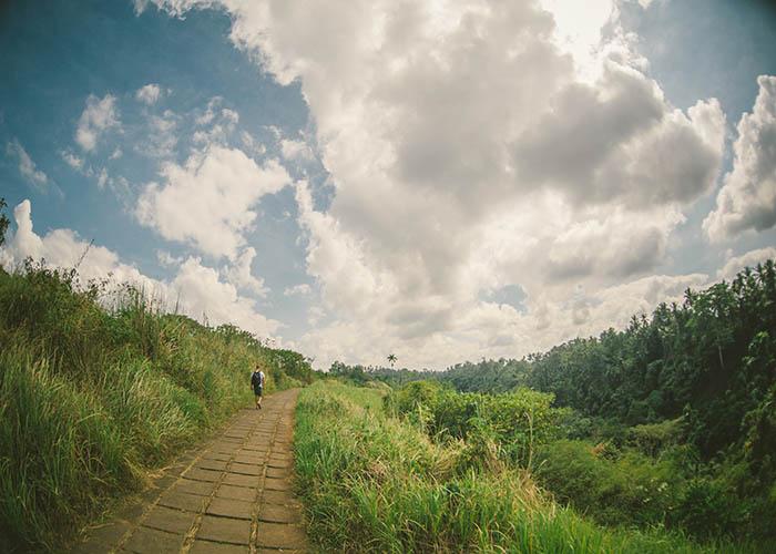 Campuhan Ridge Walk.jpg