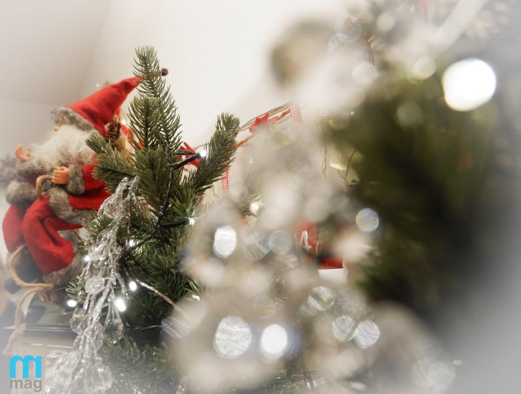 Mikołaj siedzący wśród choinek