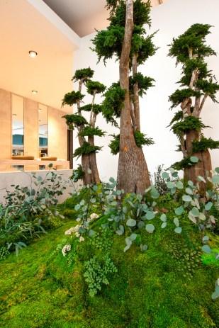 """El jardín del alma"", Claudia Bonollo para MONAMOUR NATURAL DESIGN"