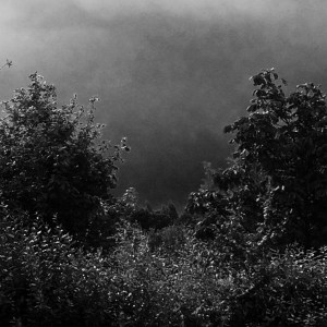 nuages gris