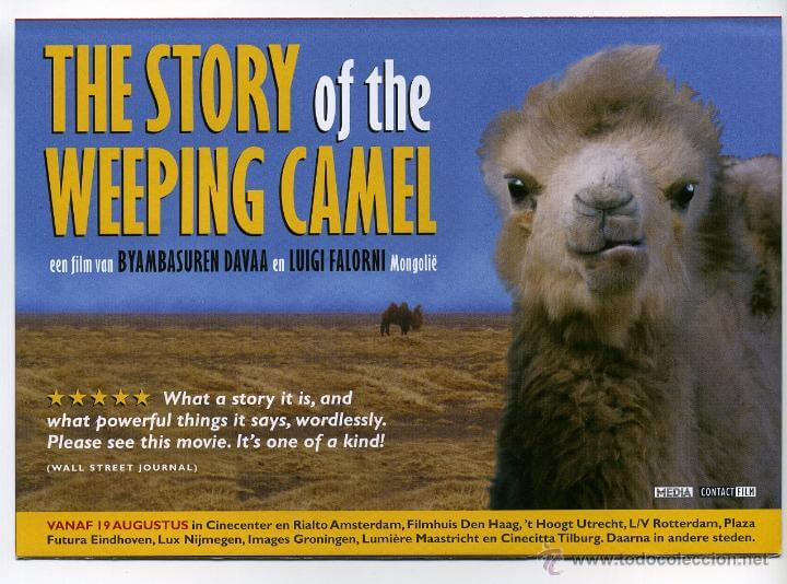 THE STORRY OF THE WEEPING CAMEL –