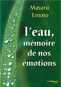 emoto-memoire-de-leau-mon-carre-de-sable3