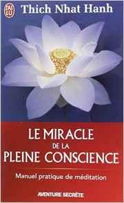 Posséder, ce n'est pas aimer : Le miracle de la pleine conscience Poche – 20 octobre 2008 de Thich Nhat Hanh (Auteur), Neige Marchand (Traduction), Francis Chauvet (Traduction)