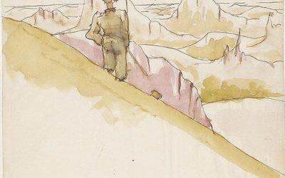 Désert solitaire, lettre d'amour au désert
