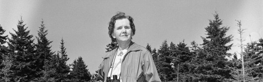 Rachel Carson, née à Pittsburgh le 27 mai 1907 et morte le 14 avril 1964 à Silver Spring, est une zoologiste et biologiste américaine. Carson commença sa carrière comme biologiste au U.S. Bureau of Fisheries (Bureau des pêches) puis se consacra progressivement à l'écriture à plein temps dans les années 1950.