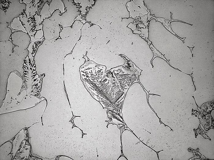 Topographie des larmes : «Une représentation en mouvement des aspects micro et macro de notre vie émotionnelle et un moyen formidable d'intégrer les domaines souvent séparés de la science et de l'art»