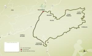 Picota Monumental Tree Route II