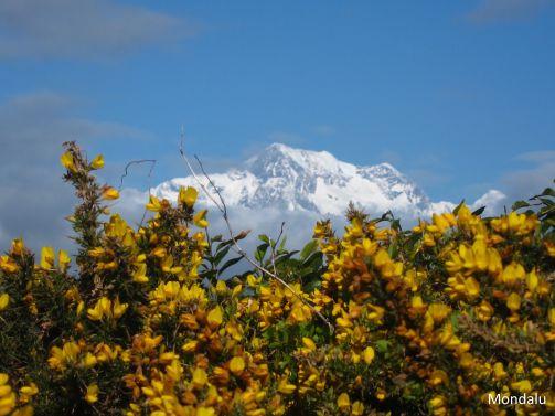 Vue sur le Mont Cook
