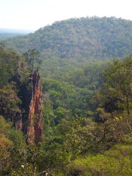 Wangi Falls - Litchfield