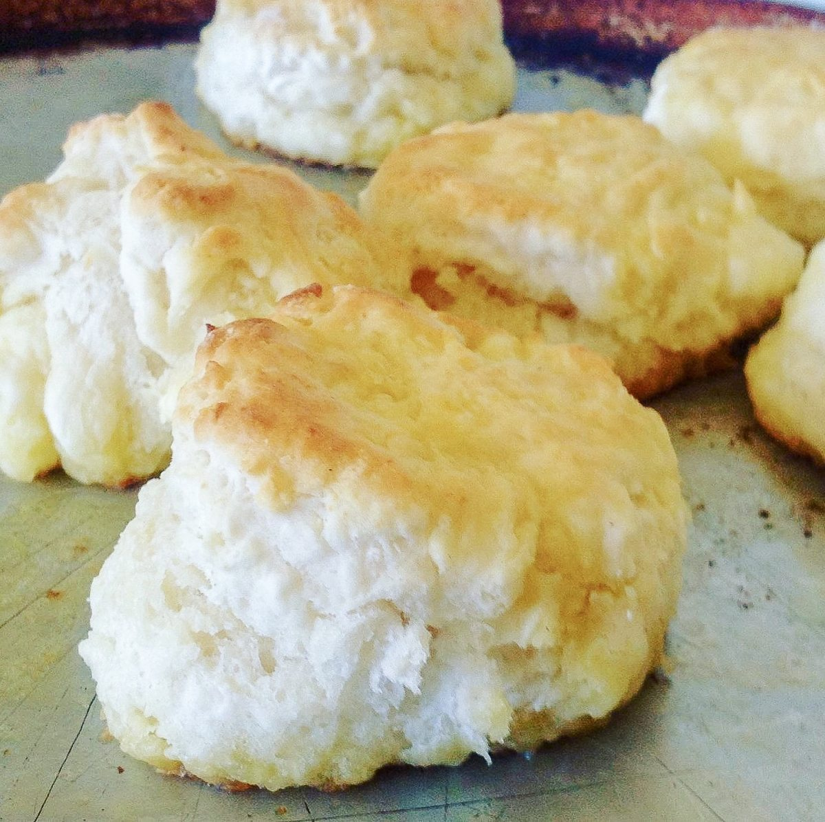 classic biscuits with sausage gravy