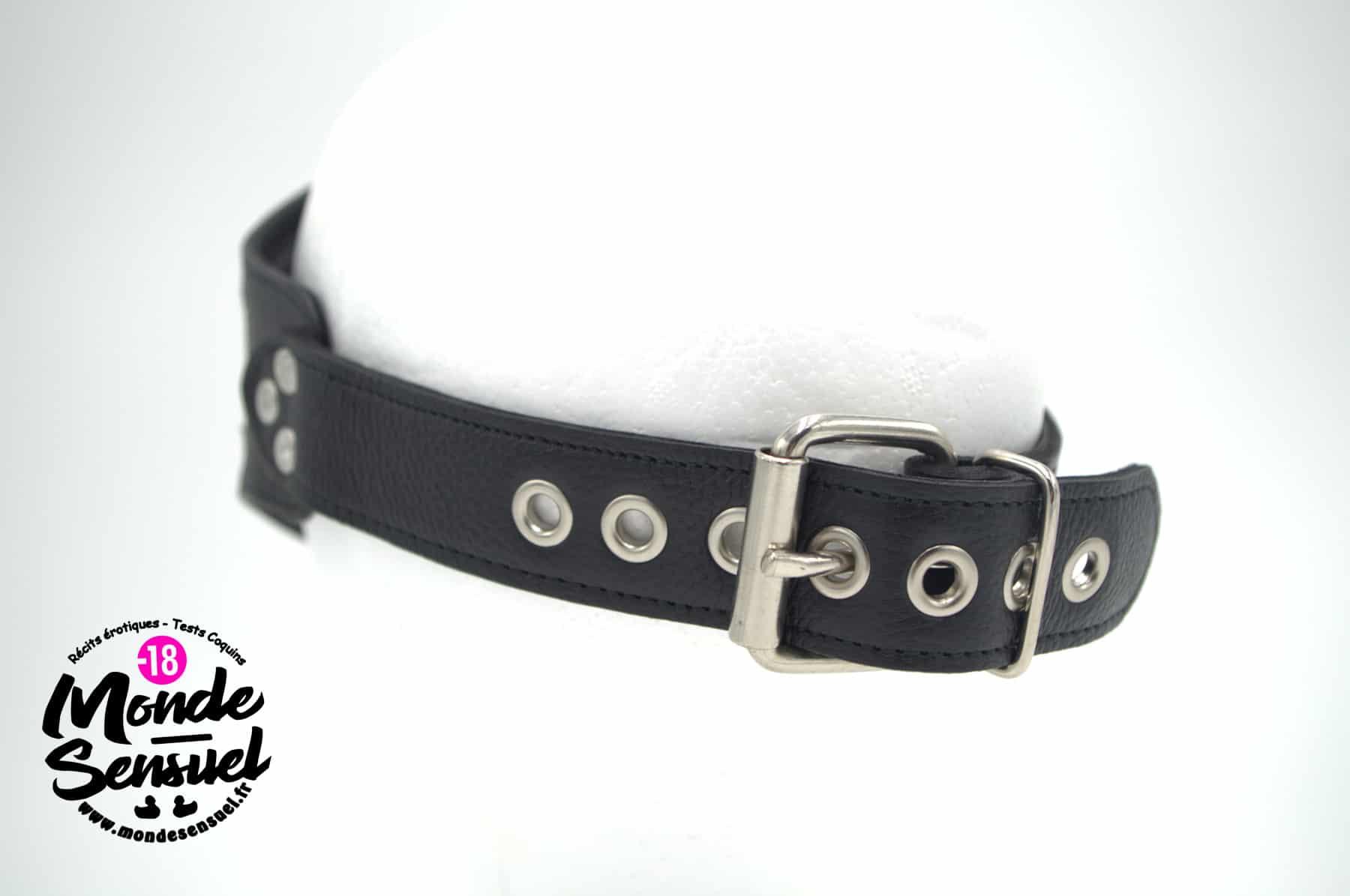 blindfold lock